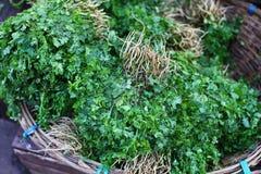 Het kruidbossen van de koriander op de markt Stock Afbeelding
