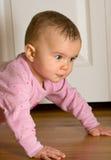 Het kruipen van de baby stock foto's