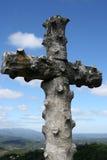 Het kruis in bos Bussaco Stock Foto's
