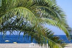 Het Kruis en de palmbladen Stock Foto's