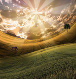 Het kruis straalt licht in hemel uit Royalty-vrije Stock Foto's