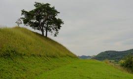 Het kruis van de Copsamerrie op heuvel stock afbeelding