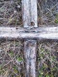 Het kruis van de spijker Royalty-vrije Stock Afbeelding