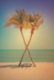 Het kruis van de twee kokosnotenpalm op het tropische strand bij dag Royalty-vrije Stock Foto's
