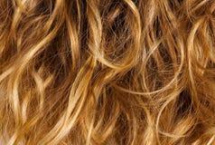 Het krullende haar van de blonde - achtergrond Royalty-vrije Stock Afbeeldingen
