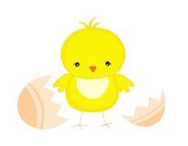 Het kuiken/de kip van Pasen Royalty-vrije Stock Afbeeldingen