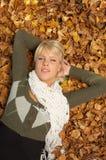 Het Kuiken van de herfst Stock Foto's