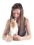 Het kussen chihuahua royalty-vrije stock fotografie