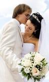 Het kussen van de bruid en van de bruidegom Royalty-vrije Stock Foto