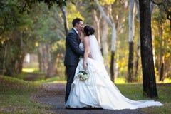 Het kussen van de bruid en van de Bruidegom onder bomen Royalty-vrije Stock Afbeelding