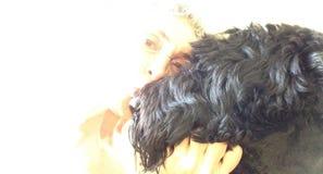 Het kussen van een Grote Zwarte Hond Stock Foto
