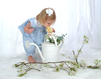 Het Kussen van het meisje Kuiken Royalty-vrije Stock Foto's