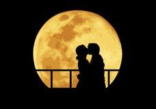 Het kussen van het paar Royalty-vrije Stock Afbeelding