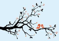 Het kussen van vogels vector illustratie