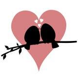Het kussen Vogeltjes op een Tak Royalty-vrije Stock Foto's