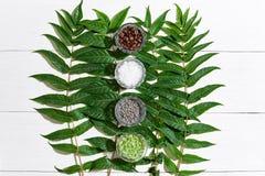 Het KUUROORDstilleven met verschillende ingrediënten voor lichaam schrobt en groene bladeren op een witte houten oppervlakte Stock Afbeelding
