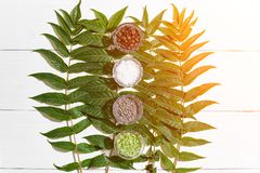 Het KUUROORDstilleven met verschillende ingrediënten voor lichaam schrobt en groene bladeren op een witte houten oppervlakte Zong Stock Afbeelding
