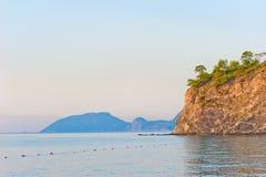 Het kweken van bomen op steile rotsachtige kust bij het kalme overzees Royalty-vrije Stock Afbeelding