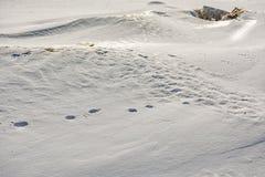 Het laatste weekend van Maart op de Golf van Finland Royalty-vrije Stock Foto's