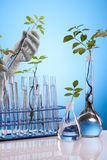 Het laboratorium van Ecologic royalty-vrije stock fotografie