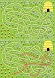 Het labyrint van bijen Stock Afbeeldingen