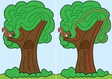 Het labyrint van de eekhoorn Royalty-vrije Stock Afbeelding