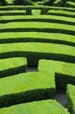 Het labyrint van hagen Royalty-vrije Stock Foto