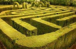 Groen labyrint in Barcelona, Spanje Stock Afbeelding