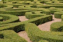 Het Labyrint van struiken stock foto's