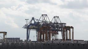 Het laden het leegmaken van containers met lading in haven stock footage