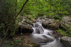 Het lagere niveau van Anna Ruby Falls stock foto