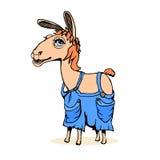 Het lamadier, hand trekt schets Stock Afbeelding
