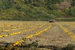 Het land en de tractor van de olie pumpik Stock Afbeeldingen
