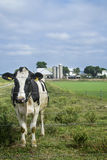 Het Land van Amish Royalty-vrije Stock Afbeeldingen
