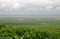 Het land van Champagne (Frankrijk) royalty-vrije stock afbeelding