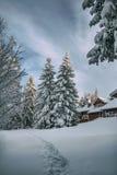 Het land van de de wintersneeuw Stock Afbeelding