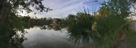 Het Land van het Evergladesmoeras in Everglades Florida Stock Afbeelding