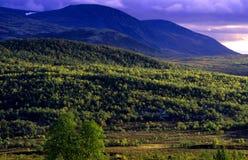 Het land van het noorden Royalty-vrije Stock Foto's