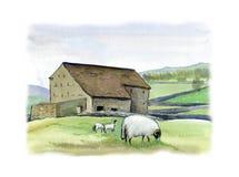 Het landbouwbedrijf en de schapen van Yorkshire met twee lammeren bij de weide, Engeland Waterverfhand getrokken landschap royalty-vrije illustratie