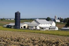 Het landbouwbedrijf en het huis van Amish stock foto