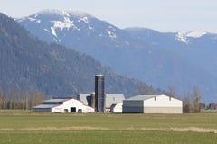 Het Landbouwbedrijf van de Berg van Sumas Royalty-vrije Stock Foto's