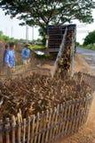 Het landbouwbedrijf van de eend Stock Foto's