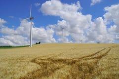 Het landbouwbedrijf van de gerst en van de wind Stock Fotografie