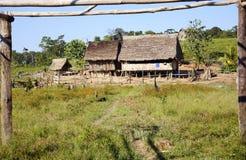 Het landbouwbedrijf van de kolonist in Amazonië Stock Foto's