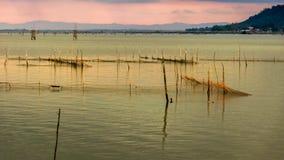 Het landbouwbedrijf van de vissenkippenren in Songkhla-Meer, Thailand stock fotografie