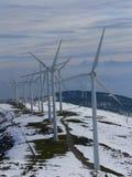 Het landbouwbedrijf van de wind Royalty-vrije Stock Fotografie