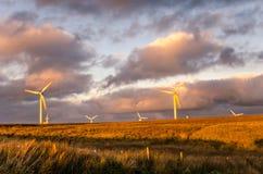 Het landbouwbedrijf van de wind bij zonsondergang Royalty-vrije Stock Afbeeldingen
