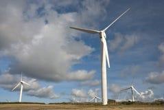 Het landbouwbedrijf van de wind Cornwall het UK Royalty-vrije Stock Foto