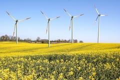 Het landbouwbedrijf van de windmolen Stock Afbeelding