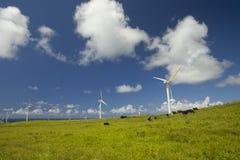 Het landbouwbedrijf van de windmolen - Groene Ecologie Stock Afbeeldingen